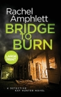 Bridge to Burn: A Detective Kay Hunter murder mystery Cover Image