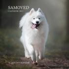 Samoyed Calendar 2021: 16 Month Calendar Cover Image