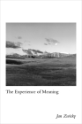 The Experience of Meaning Cover Image