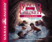 Surprise Island (Library Edition) (The Boxcar Children Mysteries #2) Cover Image