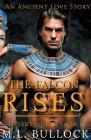 The Falcon Rises Cover Image