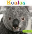 Seedlings: Koalas Cover Image