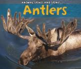 Antlers Cover Image