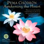 Pema Chodron 2020 Wall Calendar: Awakening the Heart Cover Image