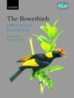 The Bowerbirds: Ptilonorhynchidae (Bird Families of the World #10) Cover Image