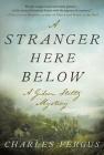 A Stranger Here Below: A Gideon Stoltz Mystery (Gideon Stoltz Mystery Series) Cover Image
