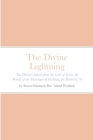 The Divine Lightning: by Imam Sulaiman ibn `Abdul Wahhab An-Najdi Cover Image