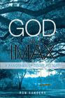 God in IMAX: A Panorama of Divine History Cover Image