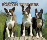 Boston Terriers, for the Love of 2020 Deluxe Foil Cover Image