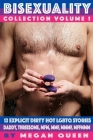Bisexuality - Collection - Volume 1: 12 Explicit Dirty Hot LGBTQ Short Stories - Daddy, Threesome, Mfm, Mmf, Mmmf, Mffmmm Cover Image