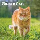 Ginger Cats 2020 Square Cover Image