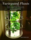 Variegated Plants: How to grow and care Cover Image