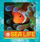 Sea Life: A close-up photographic look inside your world (Up Close) Cover Image