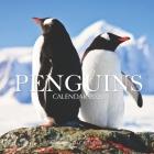 Penguins Calendar 2020: 16 Month Calendar Cover Image
