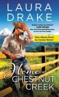 Home at Chestnut Creek: Two full books for the price of one Cover Image