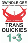 A Collection of Trans Quickies 1-3: The Virgin Crossdresser at the Crossroads Motel / Transsexual on a Train / Crossdresser Caught by Roommate Cover Image