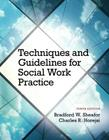 Techniques and Guidelines for Social Work Practice with Pearson eText Access Card Package Cover Image
