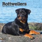 Rottweilers 2020 Mini 7x7 Cover Image