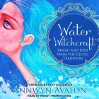 Water Witchcraft: Magic and Lore from the Celtic Tradition Cover Image