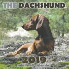 The Dachshund 2019 Mini Wall Calendar Cover Image