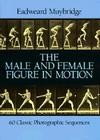 The Male and Female Figure in Motion: 60 Classic Photographic Sequences Cover Image