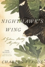 Nighthawk's Wing: A Gideon Stoltz Mystery Cover Image