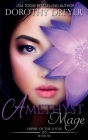 Amethyst Mage Cover Image