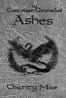The Custodian Chronicles Ashes Cover Image