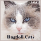 Ragdoll Cats 2021 Wall Calendar: Beautiful Ragdoll Cats Wall Calendar 8.5