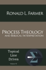 Process Theology and Biblical Interpretation (Topical Line Drives #45) Cover Image