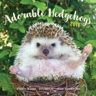 Adorable Hedgehogs 2018: 16-Month Calendar September 2017 through December 2018 Cover Image