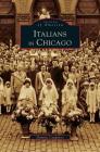 Italians in Chicago Cover Image