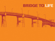 Bridge to Life (Orange) 25-Pack Cover Image