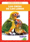 Las Crías de Los Loros (Parrot Chicks) Cover Image