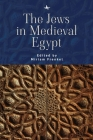 The Jews in Medieval Egypt Cover Image