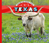 Texas (Explore the United States) Cover Image