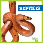 Reptiles / Reptiles (Clasificacion de los Animales / Animal Classification) Cover Image