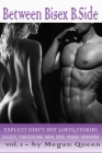 Between - Bisex - B.Side Volume 1: 5 Explicit Dirty Hot LGBTQ Short Stories - Daddy, Threesome, Mfm, Mmf, Mmmf, Mffmmm Cover Image