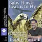 Baby Hawk Learns to Fly Cover Image