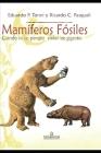 Mamíferos fósiles: cuando en La Pampa vivían gigantes Cover Image