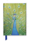 Peacock in Blue & Green (Foiled Journal) (Flame Tree Notebooks #36) Cover Image