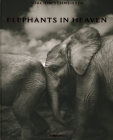 Elephants in Heaven Cover Image