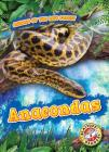 Anacondas (Animals of the Rain Forest) Cover Image