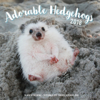Adorable Hedgehogs Mini 2018: 16 Month Calendar Includes September 2017 Through December 2018 Cover Image