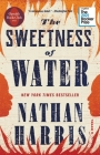 The Sweetness of Water (Oprah's Book Club): A Novel Cover Image