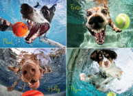 Underwater Dogs: Play Ball 1000-Piece Puzzle Cover Image