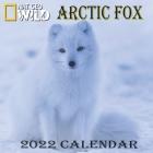 Arctic Fox Calendar 2022: ARCTIC FOX calendar 2022