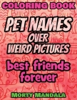 Coloring Book - Pet Names over Weird Pictures - Color Your Imagination: 100 Pet Names + 100 Weird Pictures - 100% FUN - Great for Adults Cover Image