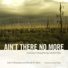 Ain't There No More: Louisiana's Disappearing Coastal Plain (America's Third Coast) Cover Image