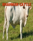 Brahman Cattle: Incredible Pictures and Fun Facts about Brahman Cattle Cover Image